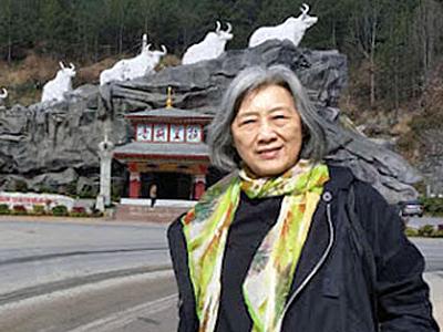 Gao Yu2016