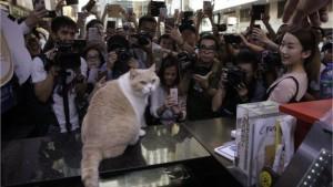 HK Bookfair