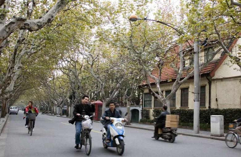 Street of Eternal Happiness1
