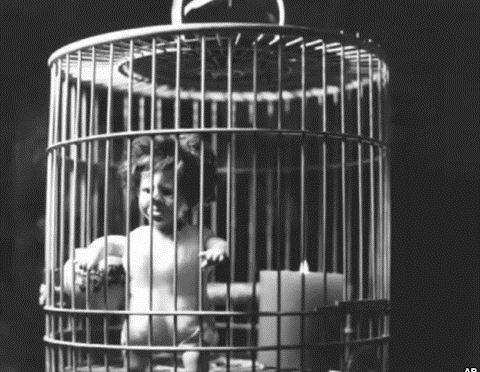 Liu Xia-cage