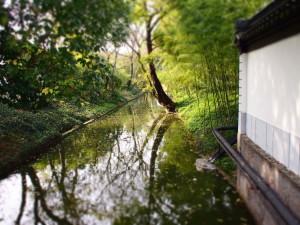 唐代市河的全面保护