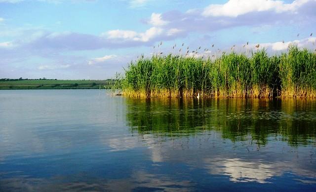 南布克河的水是用来洗涤灵魂的