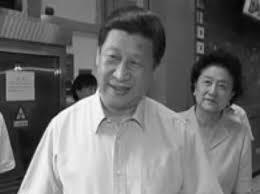 习近平与刘延东
