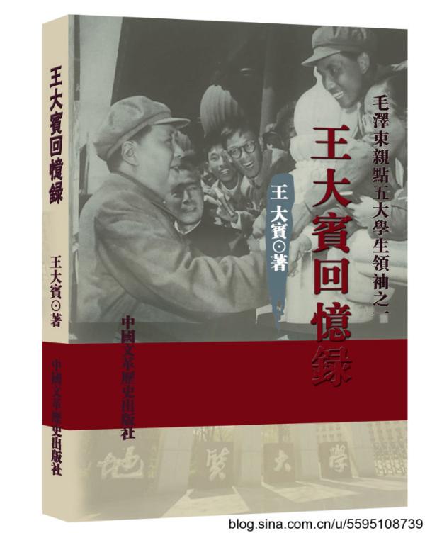 王大宾回忆录