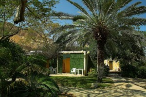 隱該地吉布茲熱帶花園中的別墅1