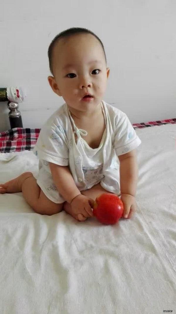 张海涛、李爱杰的儿子