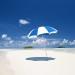 遮阳伞-常用