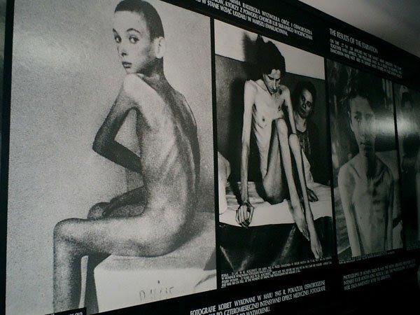 囚犯的裸体照片-奥斯维辛