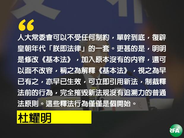 杜耀明评人大释法