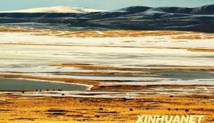 重度沙漠化土地快速增长