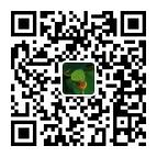 甜莲子-微信-QR-Code-Third