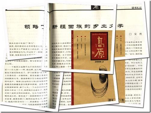 领略了新疆回族的乡土文学