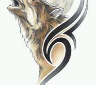 wolf狼