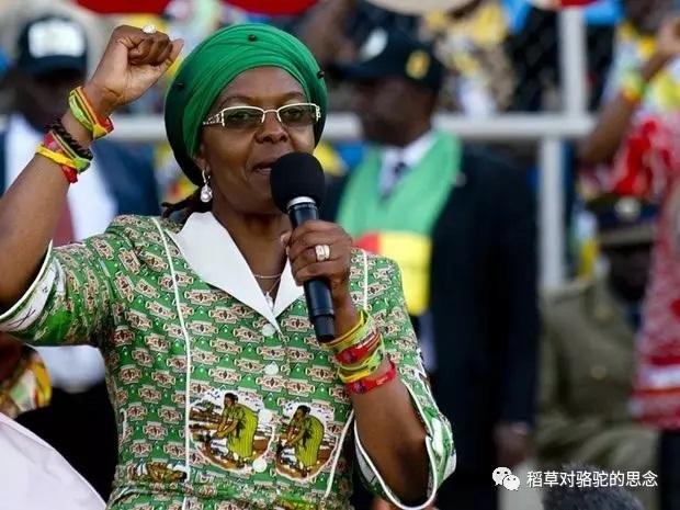 津巴布韦第一夫人 Disgrace