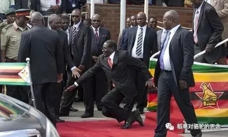 穆加贝跌倒