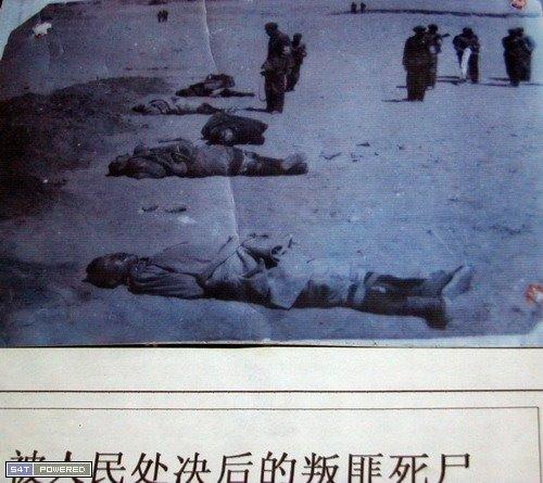 大开杀戒的西藏文革019
