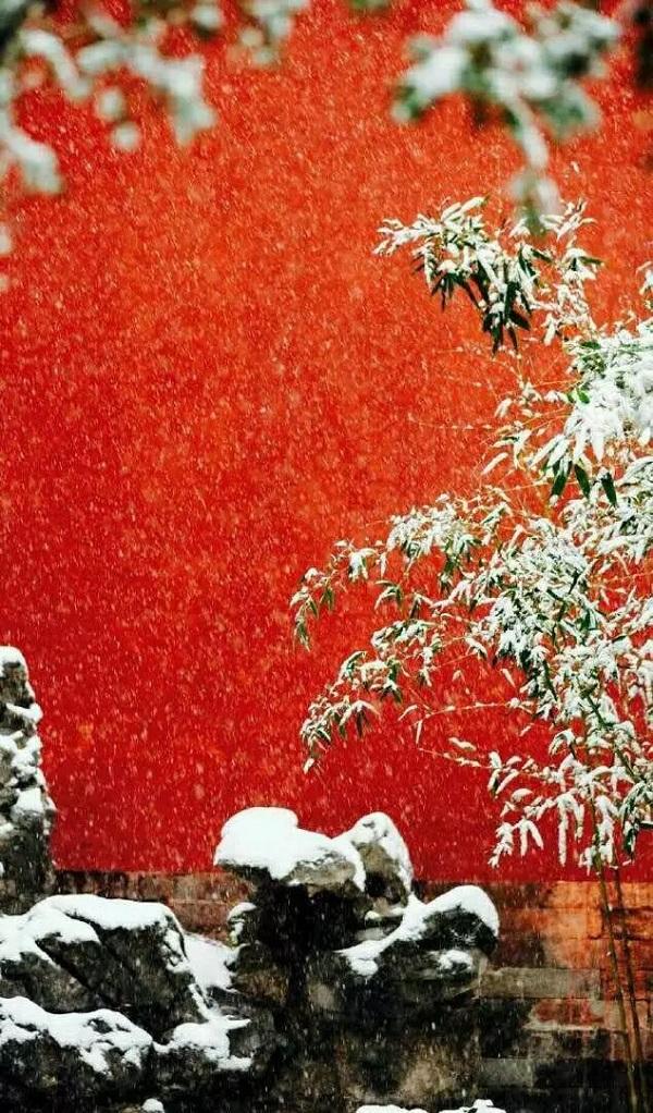 故宫春雪11