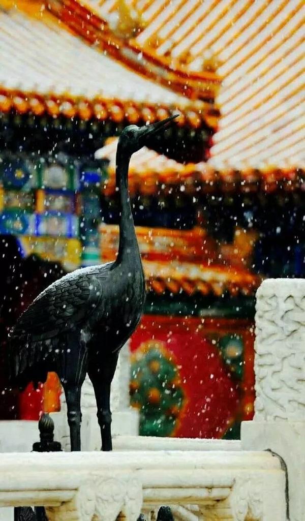 故宫春雪5