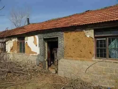 她们被安置在村里空闲的二间草房子里