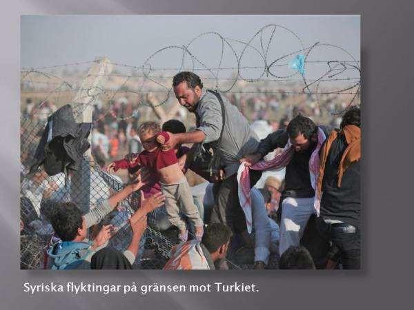 叙利亚难民1